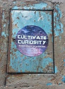 Curiosity -blog.jpg